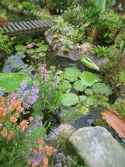 葉田野さんちの池