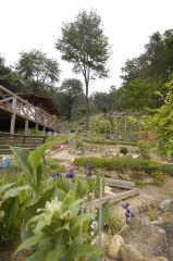 飯高さんのお庭