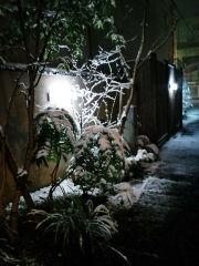 雪夜の郡山