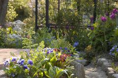春の花遊庭